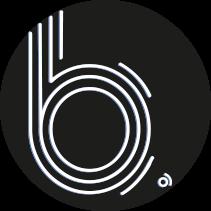b. Web Design